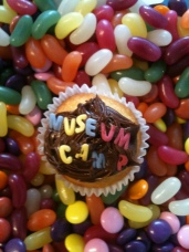 Museum Camp cupcake